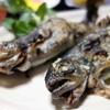 新山家料理 山びこ - 料理写真:いわな塩焼(いわな定食)