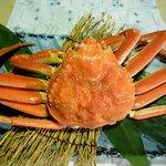 いわ樹 - 北海道産ずわい蟹
