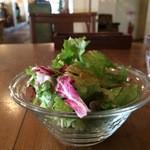 マムーニア - 野菜サラダ、ドレッシングが少ししょっぱかったです