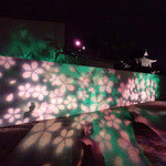 茶乃逢 - 桜を模した照明演出