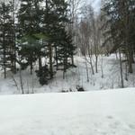 49776052 - 雪景色