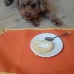 スマイルドッグカフェ - 料理写真: