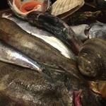 49790085 - 四十八漁場 調布店・最初に見せて貰ったお魚