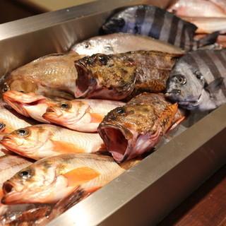 富山県新湊漁港直送の魚介類