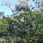 八千代 - お店前から岡崎城を望む
