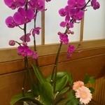 うなぎの新甫 - 今日のテーブルのお花♡