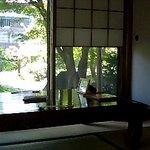 4984729 - お座敷からお庭を見る