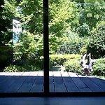 4984730 - お座敷からお庭を見る