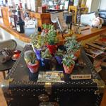 EMPORIO cafe&dining - 1F: ミニ・サボテン・コーナー