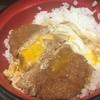 名代 富士そば - 料理写真:かつ丼490円