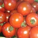 ■無農薬トマト