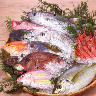 玄界灘の鮮魚を豊富にご用意!