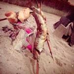 ごきげんさん - 岩魚と地鶏の串焼き