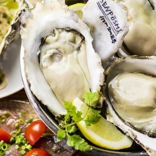 全国各地の牡蠣を食べ比べ