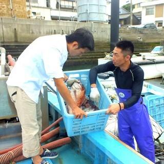 漁師から直接買い付け!