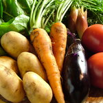 居酒屋 茶々丸 - 料理写真:栃木の有機野菜