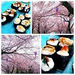 50031597 - お花見で食べました ❀.(*´▽`*)❀.
