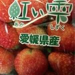 50092253 - 苺☆