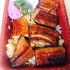 静岡うなぎ漁業協同組合 - 料理写真:鰻足弁当:1,200円(税込)