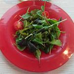 50108987 - 農家からの新鮮サラダ