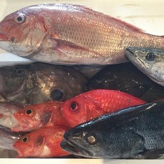 宮崎から直送の鮮魚料理!
