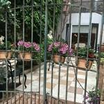 ジャルディーノ - 中庭が素敵です