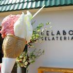 ジェラテリア ジェラボ - ジェラートダブルコーン(ミルク&ストロベリー、420円)