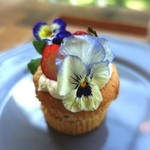 ソビノワ - 苺の春ケーキ