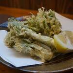 千真庵 - 山菜の天ぷら(タラの芽、こごみ、こしあぶら)