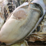 晴れときどき魚 - 料理写真:長崎 五島産の牡蠣はこの時期だけ。身がぎっしりつまってます。