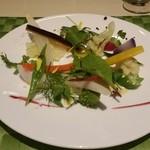 50535726 - 種類豊富な野菜サラダ。