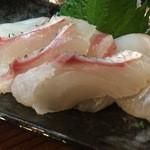 50552909 - 鯛の刺し身