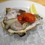 50555749 - 生牡蠣のハーフシェル