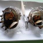 レストラン漁連 - さざえつぼ焼