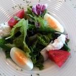 50563750 - 前菜のサラダ。