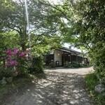 50583393 - 太山寺の参道沿い