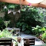 50603396 - 沖縄の植物がたくさんのお庭