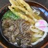 資さんうどん - 料理写真:肉ごぼう天¥650