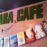 ジャカラカフェ - 店内壁面もカラフルに♪