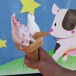 徳山牧場 アイス工房 - ミックスベリー&ミルク