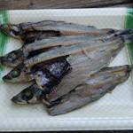 山元商店 - 2016.05 地物の深海魚、メヒカリの干物(400円)