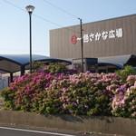山元商店 - 2016.05 一色港にある、さかな広場の朝市です。