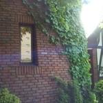 珈琲館 くすの樹 - 横から見た゛くすの樹゛の外観