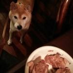 50692505 - コレはたまらん!普段食べたことない高級肉に目がくぎ付け。
