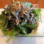 厨 NAKAMURA - ボリューミー雑魚と豆腐、季節の野菜たっぷりサラダ