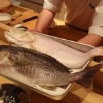 鯛良 - ■イサキ、愛媛県産白川甘鯛