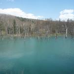 カフェ ル パラディ - おまけ:青い池