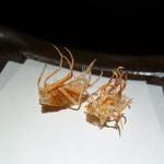 すぎ村 - 料理写真:車エビの足