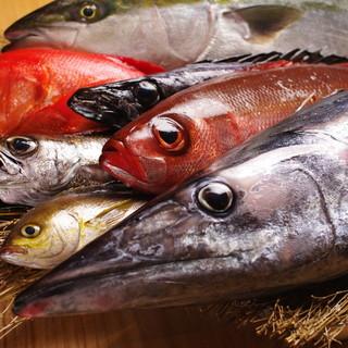◆究極の朝獲れ天然地魚と活魚の店