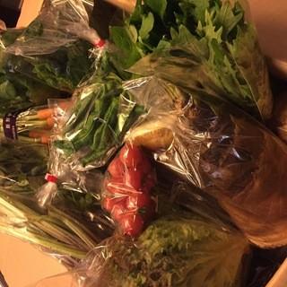 愛媛県今治市から直送で届く食材